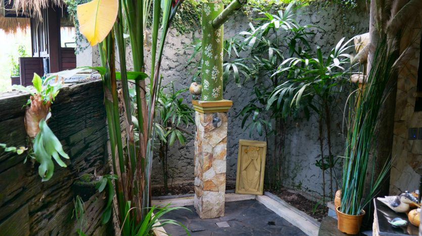 Freehold villa for sale with jungle view-Shower